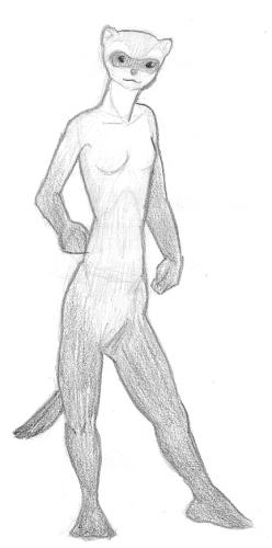 Anthro Ferret