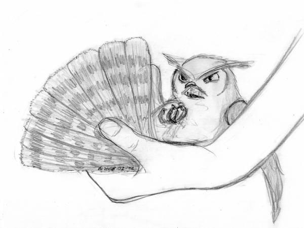 Owl Fan