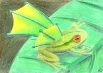 Winged Frog
