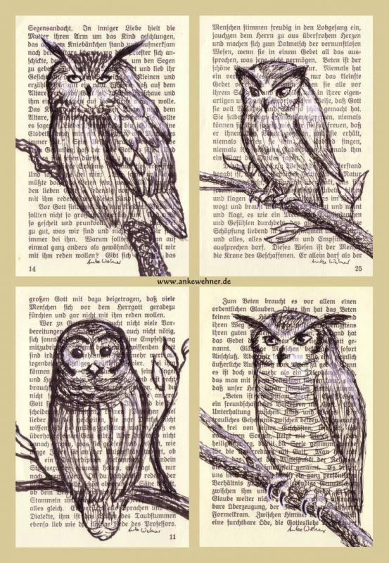 Page Owls