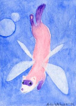 Fairy Ferret