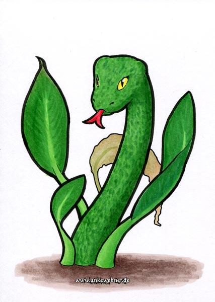 Mottled Snakeweed